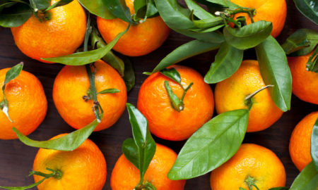 Japanese Fruit Sumo Citrus Gaining Growing Popularity In US