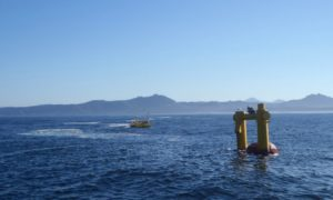 New Oregon Facility Could Boost Wave Energy Prospects